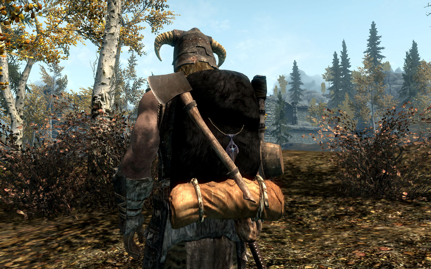 http://skyrimsurvival.com/wp/wp-content/uploads/2015/04/backpack.jpg